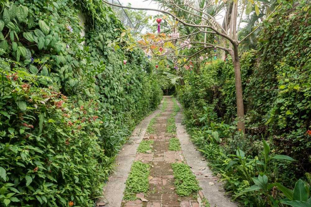 The way to the wooden caravan starts with a verdant hidden pathway.